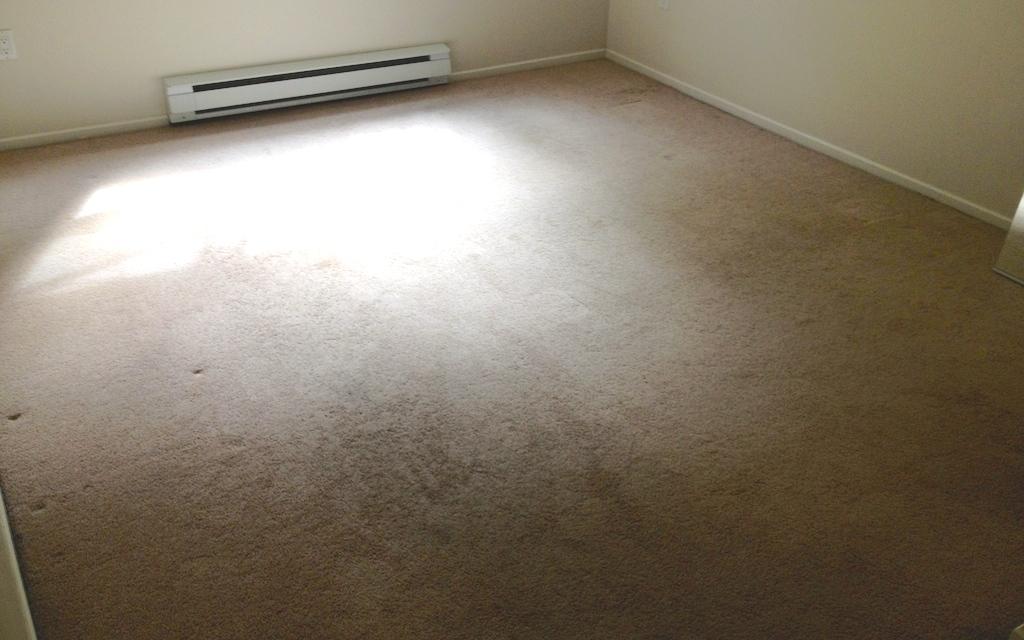 laminate floors in port moody