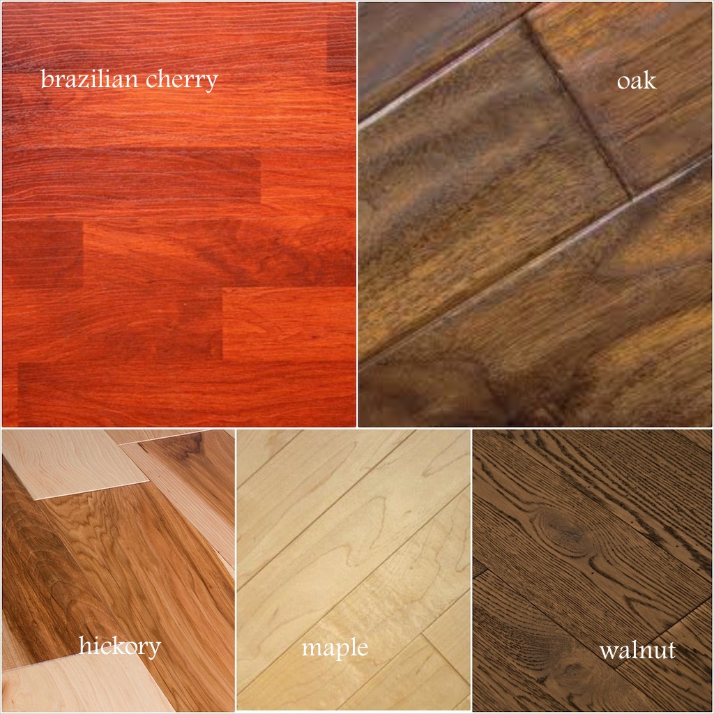 Wood floor species